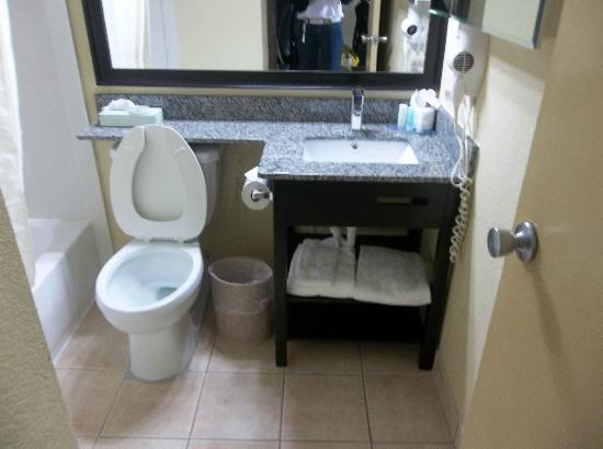 Clarion Hotel at Carowinds: Our bathroom