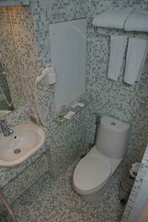 โรงแรม เลอ ฟินิกซ์ สุขุมวิท: The bathroom was small!