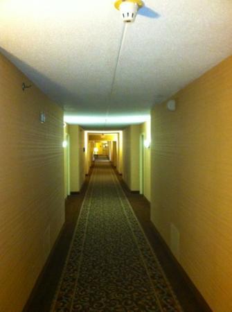 Poughkeepsie Grand Hotel: Hallway