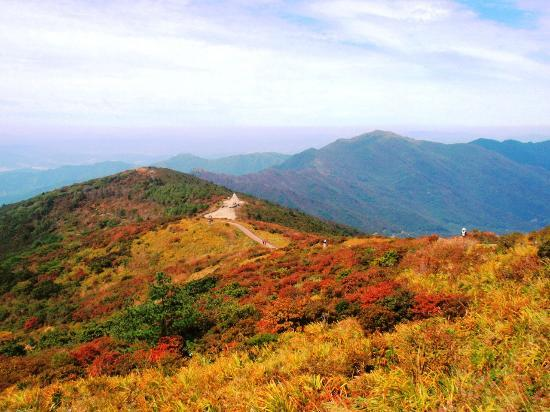 Early Autumn In Nogodan Ridge Jiri Mountain Picture Of South Korea Asia Tripadvisor