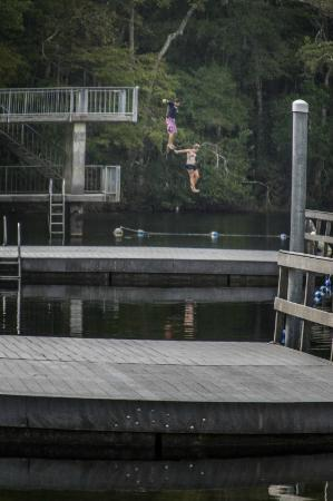 Wakulla Springs Lodge: Take a dive from the two story tower