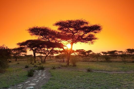 Mapito Tented Camp Serengeti: Sunset at Mapito Camp