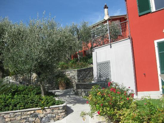 B&B Il Parco: Hotel among olive trees.