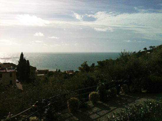 B&B Il Parco: View down the hill to the sea.