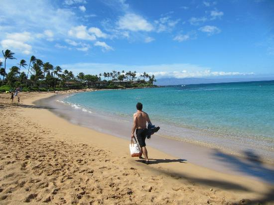 Napili Kai Beach Resort: Private beaches