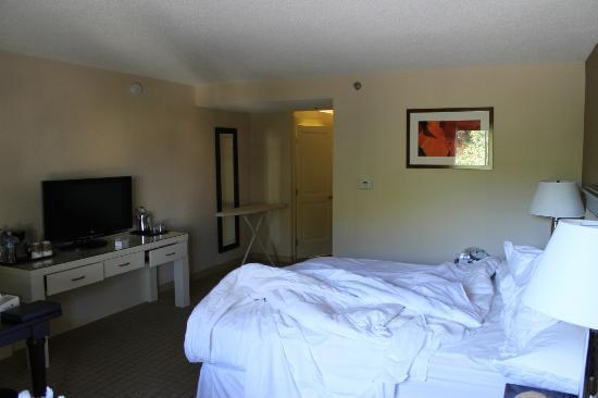 Sheraton San Jose Hotel: Apartamento