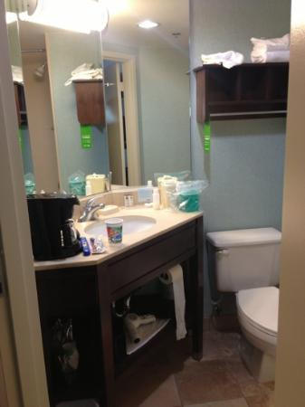 Hampton Inn Los Angeles / Carson / Torrance: Small bathroom