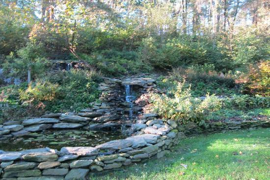 Pheasant Run Farm: waterfall