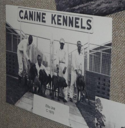 Texas Prison Museum: The kennels