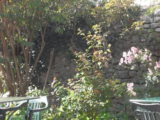 Le petit jardin photo de le petit jardin viens for Le petit jardin