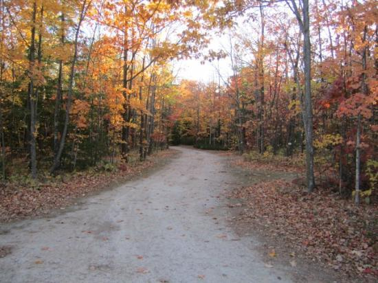 Door County Camping Retreat: Fall Foliage Drive on Property
