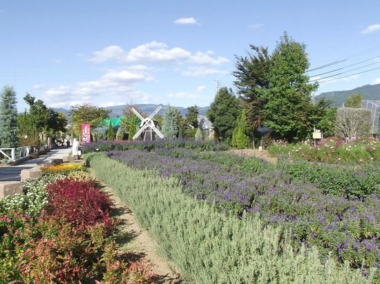 Herb Garden Tabinikki