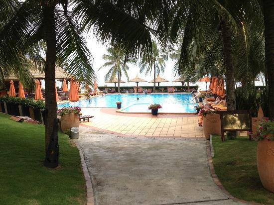 Terracotta Resort: Бассейн очень приличный , хлоркой не пахнет. А за бассейном выход на море!