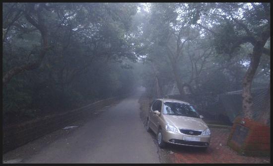 MTDC Holiday Resort Mahabaleshwar: Mist creeping over the MTDC Mahabaleshwar