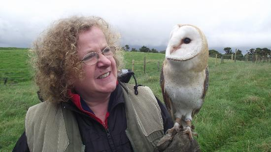 Newgrange Falconry: with Jinny the owl