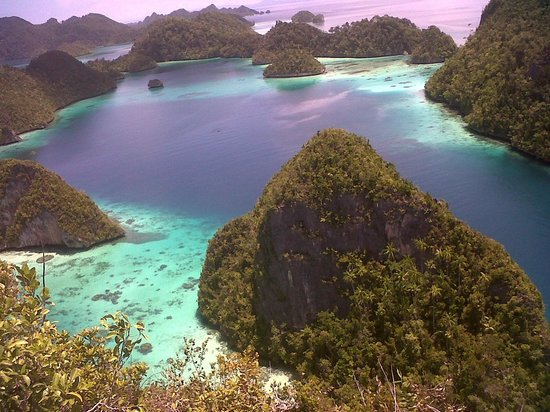 Raja Ampat Islands Sorong All You Need To Know Before