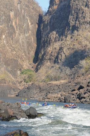 Zambezi Rafting Day Tours