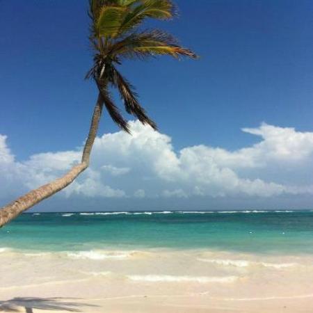 VIK Hotel Arena Blanca: plage à 15h