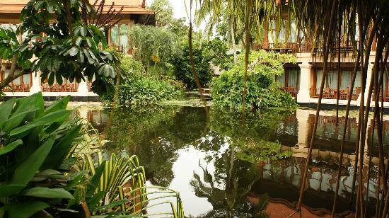 Anantara Hua Hin Resort: View of lagoon rooms