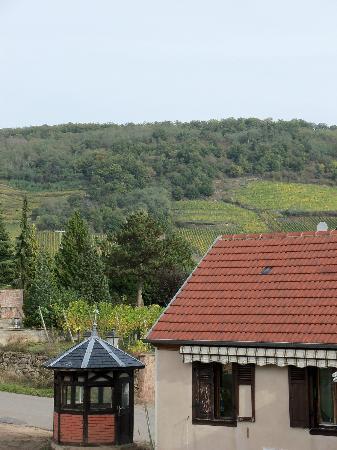 Hotel Le Parc : vignes de coteaux