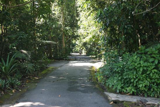 هيريتيج لودج آند سبا: Driveway of the Heritage Lodge 
