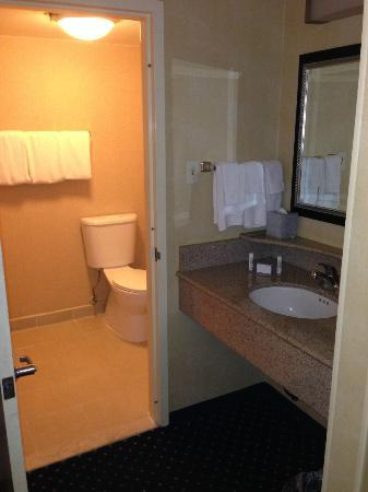 Courtyard Los Angeles Hacienda Heights/Orange County: Bathroom