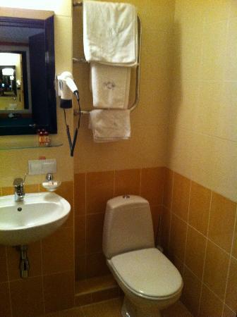 Bratislava Hotel: Bathroom