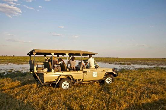 Camp Savuti: Evening Game drives