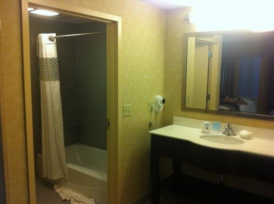 Hampton Inn & Suites Parsippany/North: ванна