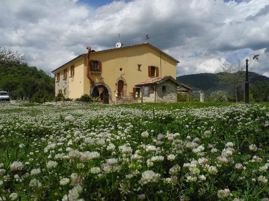 Agriturismo Villa Furlo: Casolare