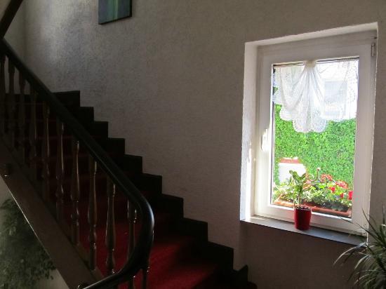 Hotel Zum Bären: stairs