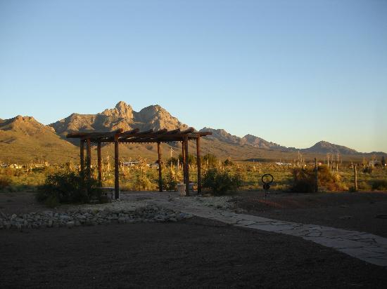 DreamCatcher Inn de Las Cruces: Organ Mountains view from the Inn