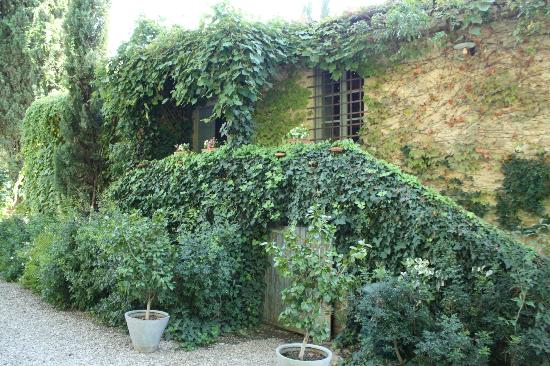 Agriturismo La Striscia: Our Building