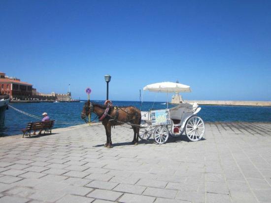 Old Venetian Harbor : Pferde-Kutschen laden zu einer Rundfahrt durch die Altstadt und um den Hafen ein