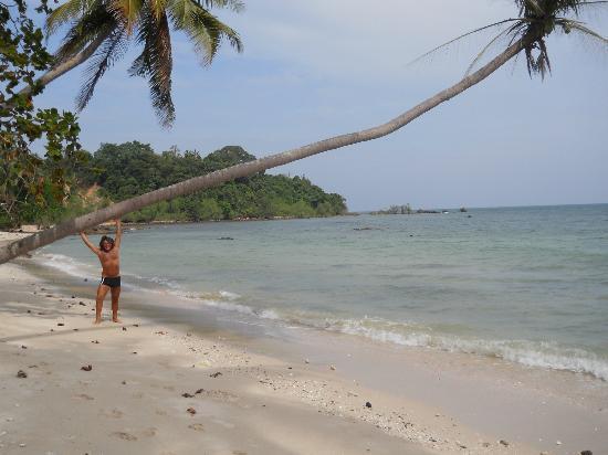 Armonia Village Resort and Spa: spiaggia