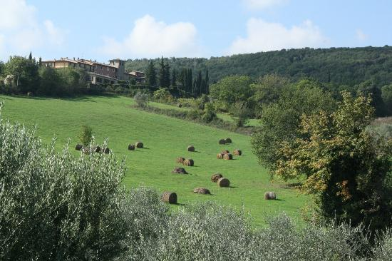 Casanova di Pescille: View of the Surrounding Tuscan Countryside