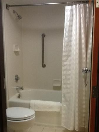 Hyatt Place Raleigh-Durham Airport: bathroom