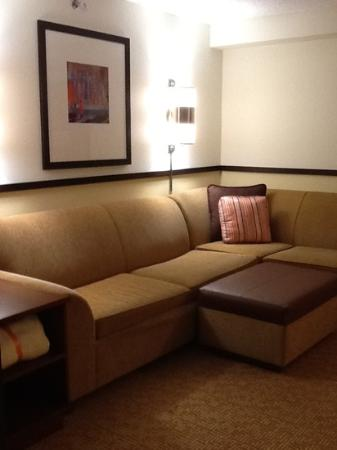 Hyatt Place Raleigh-Durham Airport: sitting area/sofa sleeper