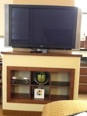 Hyatt Place Raleigh-Durham Airport: swivel tv