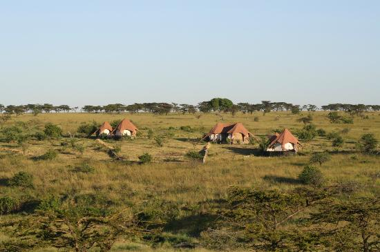 Amani Mara Lodge: Sundowner with the lodge from across the ridge