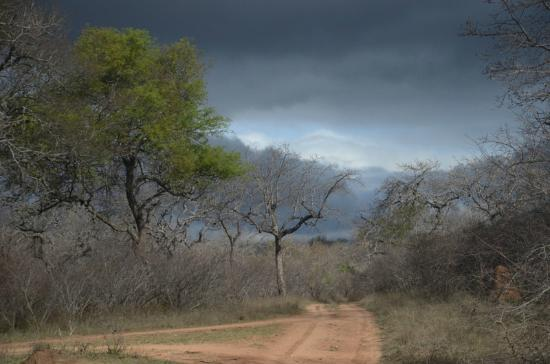 N'kaya Lodge: incredible african sky