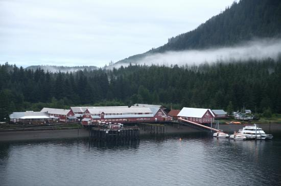 Cannery Building From The Tender Dock Picture Of Icy