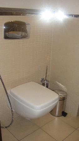 Safir Doha Hotel: Toilet