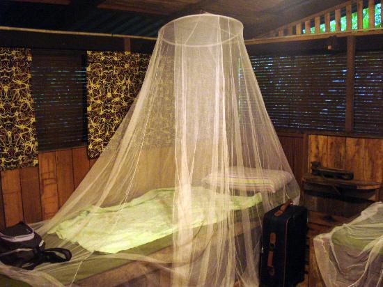 The Kebun: nuit ds notre chambre de la longhouse