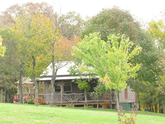 Rim Rock's Dogwood Cabins: Coyote Hollow