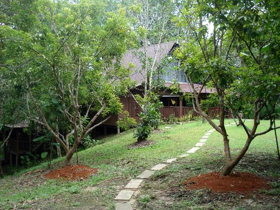 The Kebun: vers le bungalow Adrian
