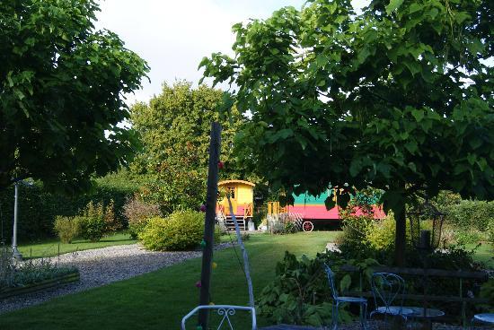 Le Presbytere : Back Garden