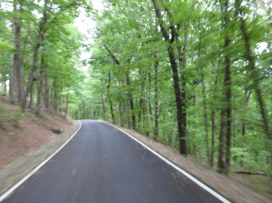 Petit Jean State Park: You travel up a tree lined paved road to the top...