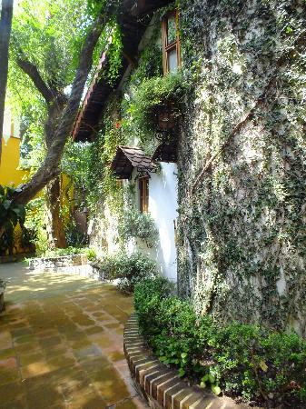 La Casa de los Arboles: MAGNIFICAS HABITACIONES