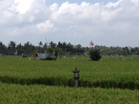 Fairmont Sanur Beach Bali : Isle of the gods